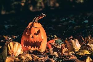 halloween jackolanterns